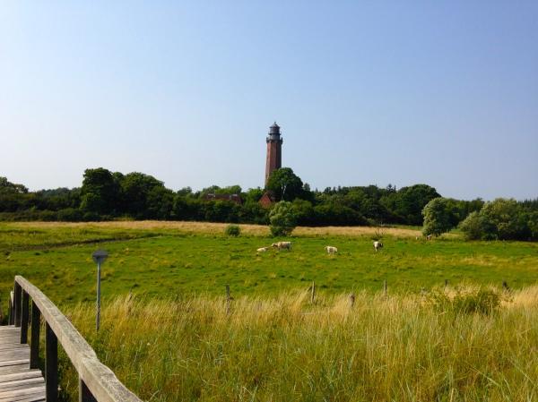 """Leuchtturm """"Neuland"""""""